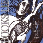 books lie - hall of fame of fire - level plane