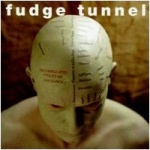 fudge tunnel - the complicated futility of ignorance - earache