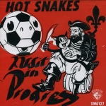 hot snakes - audit in progress - swami