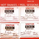 hot snakes - peel sessions - swami - 2005